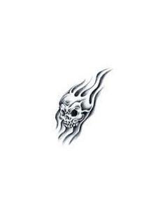 Lebka v plameňoch -...