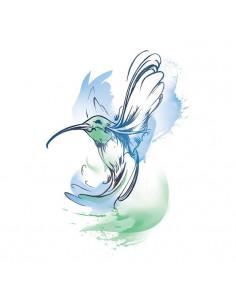 Kolibrík - watercolor...