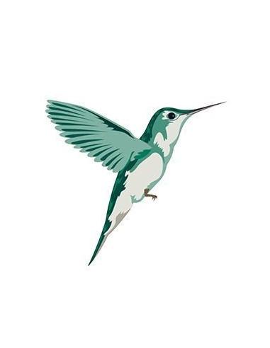 Kolibrík - nalepovacie tetovanie