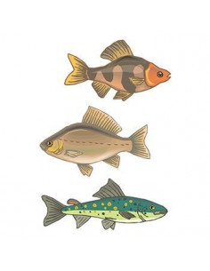 Ryby - sada tetovačiek