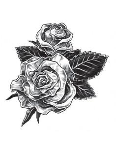 Dve šedé ruže - dočasné...