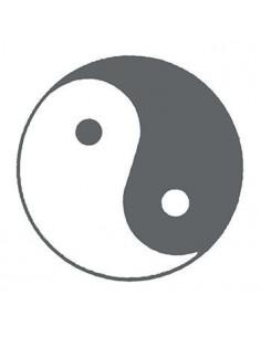 Symbol Jin a Jang svietiaci...