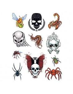 Lebky, pavúky a ďalšie...