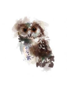 Sova - watercolor...
