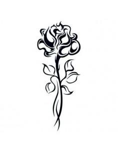 Ruža na dlhej stonke -...