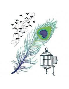 Pávie pero, klietka a vtáky...
